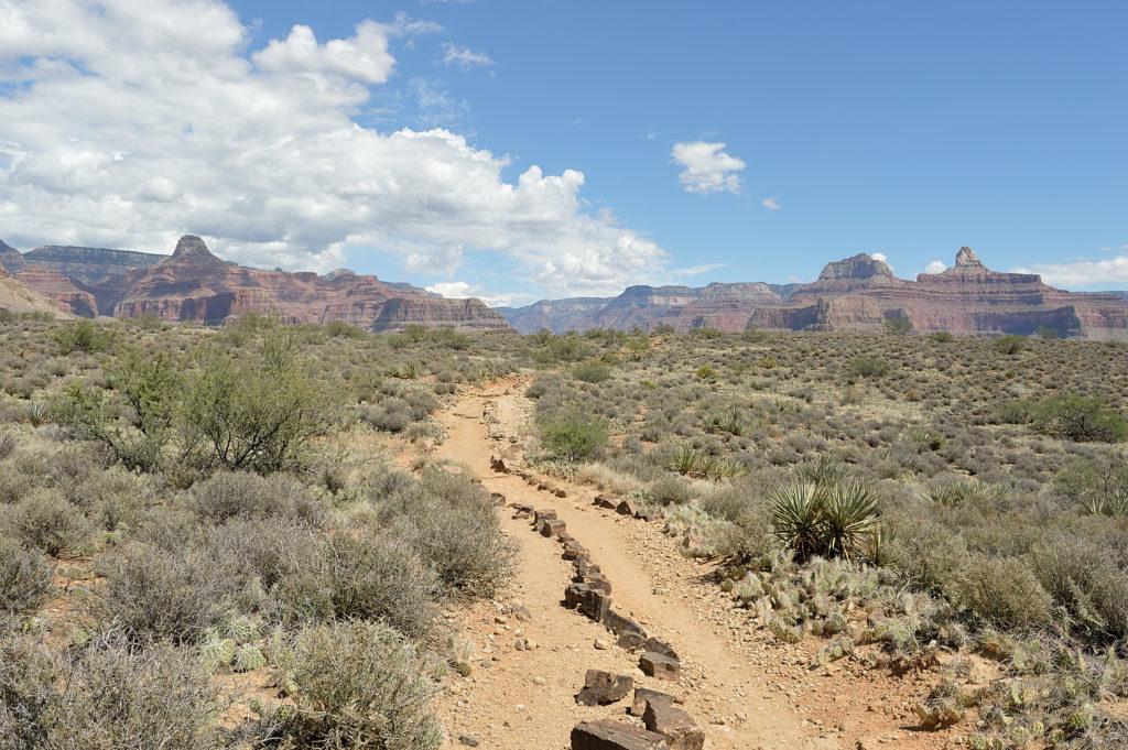 plateau point wielki kanion