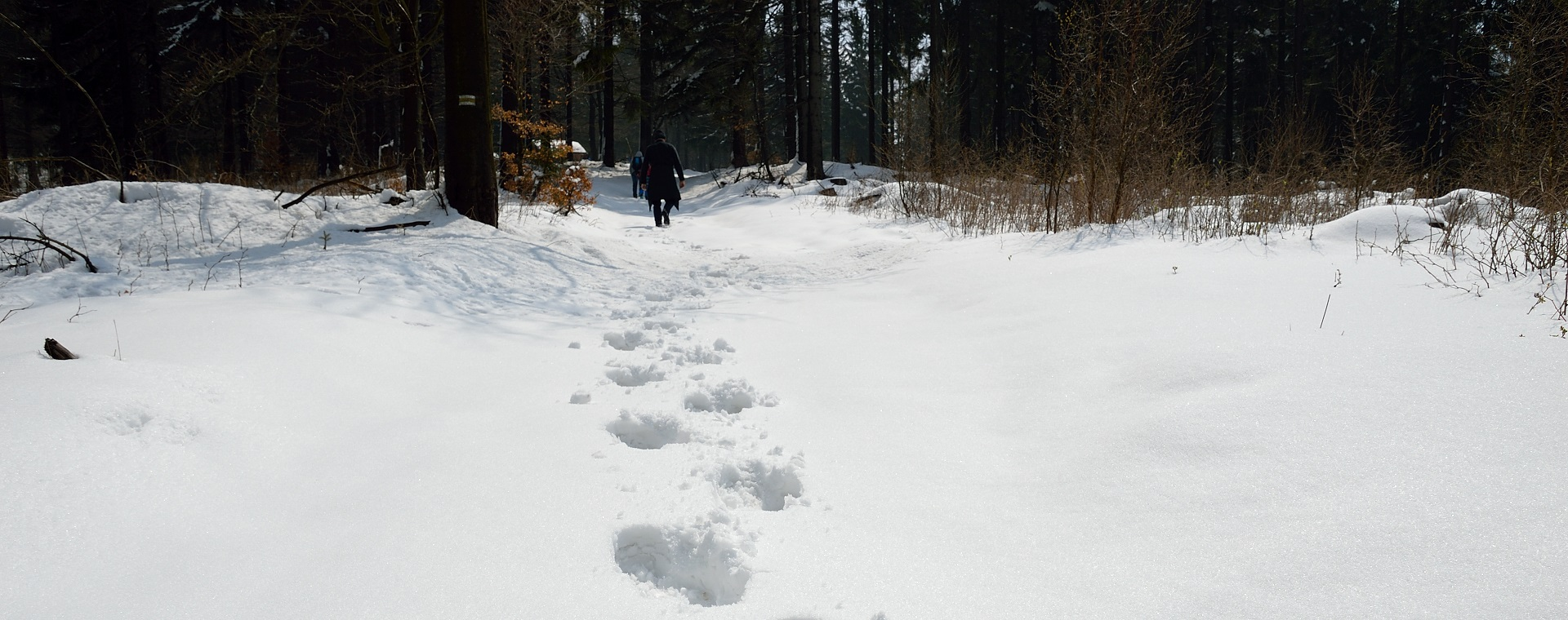 Wielka Sowa końcem kwietnia w głębokim śniegu. Korona Gór Polski.