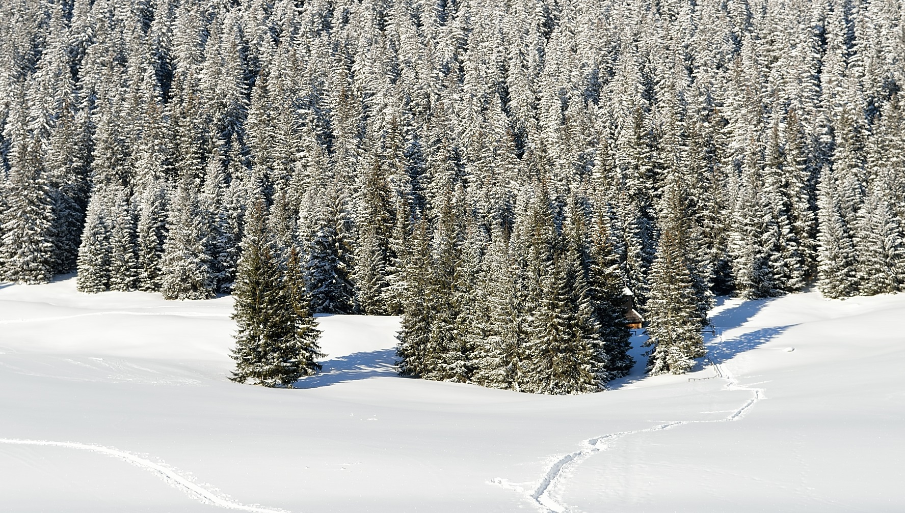 A List Of Unique Places In Poland Worth Visiting In Winter.