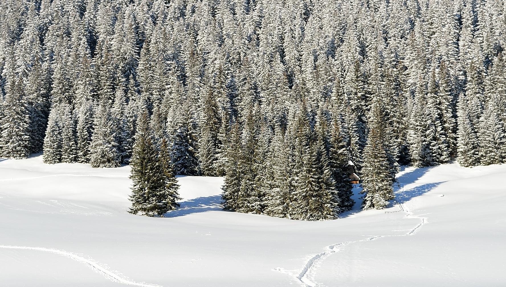 Lista miejsc w Polsce, które warto odwiedzić zimą: nieoczywiste i klasyczne propozycje.