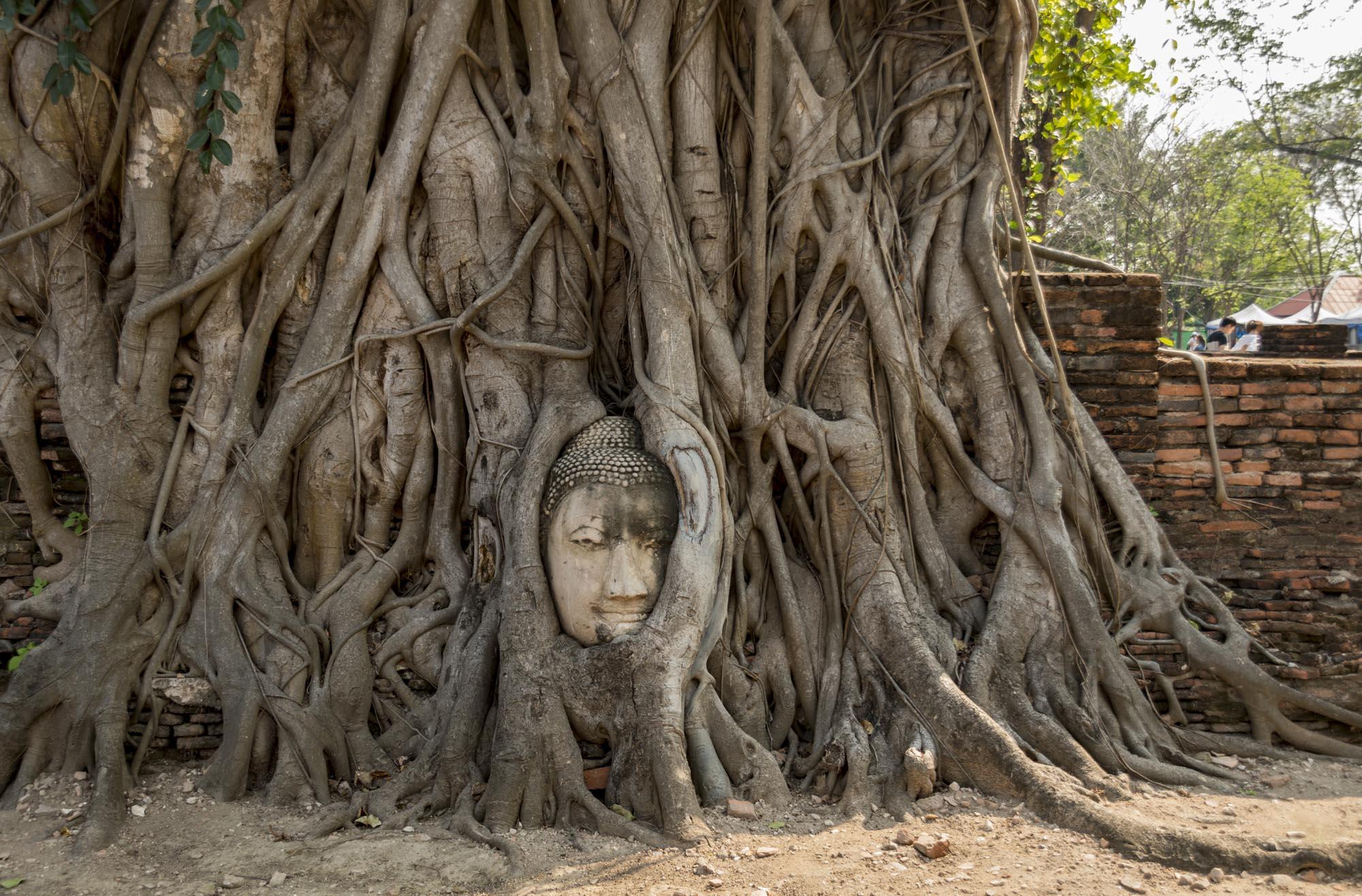 Ayutthaya temples: Wat Phra Mahathat