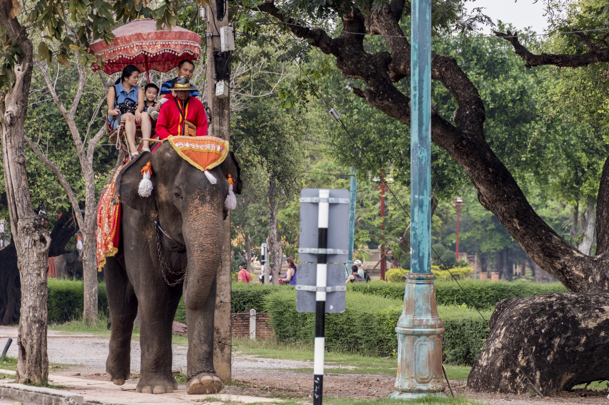Ayutthaya Temples & Attractions: what NOT to do