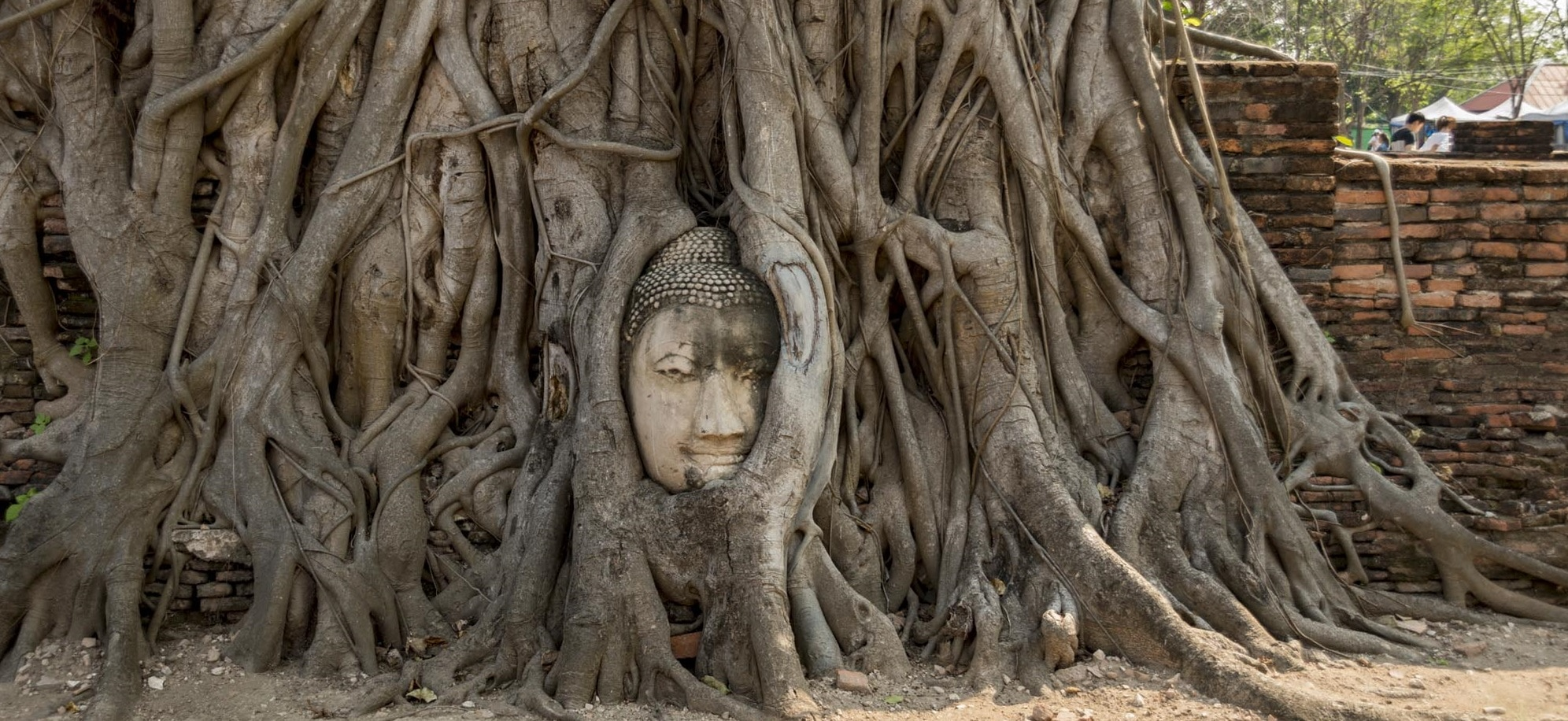 Full Guide To The Most Stunning Ayutthaya Temples And Attractions