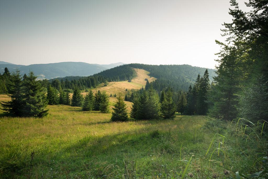gdzie jechać w góry: Gorce