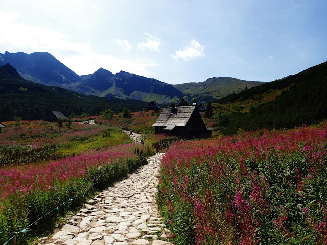 gdzie jechać w góry: Tatry