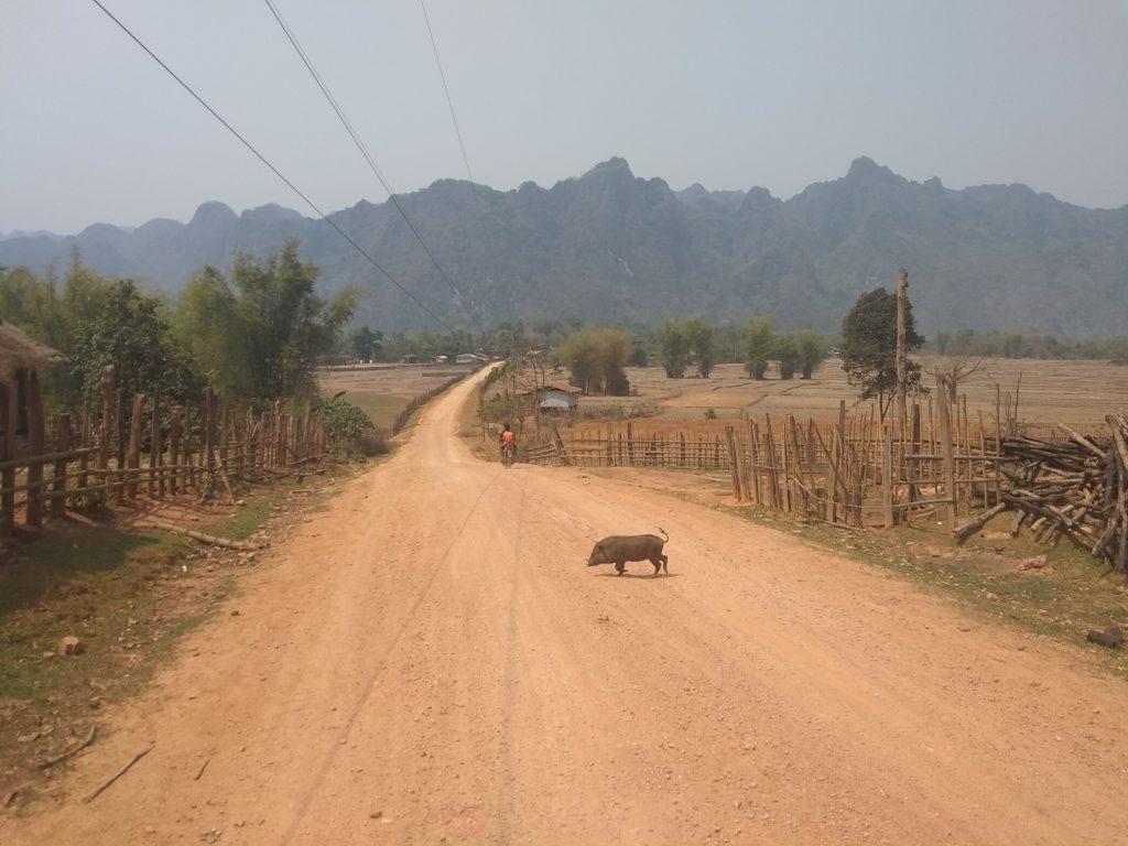 widok na Laotańską wieś